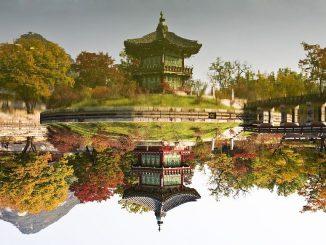towards-the-garden-Corée du Sud